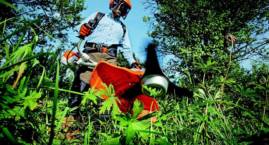 Jardinagem: como economizar com o seu aluguel dos equipamentos