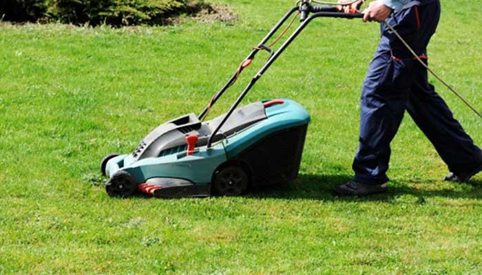 Saiba tudo sobre equipamentos de jardinagem!