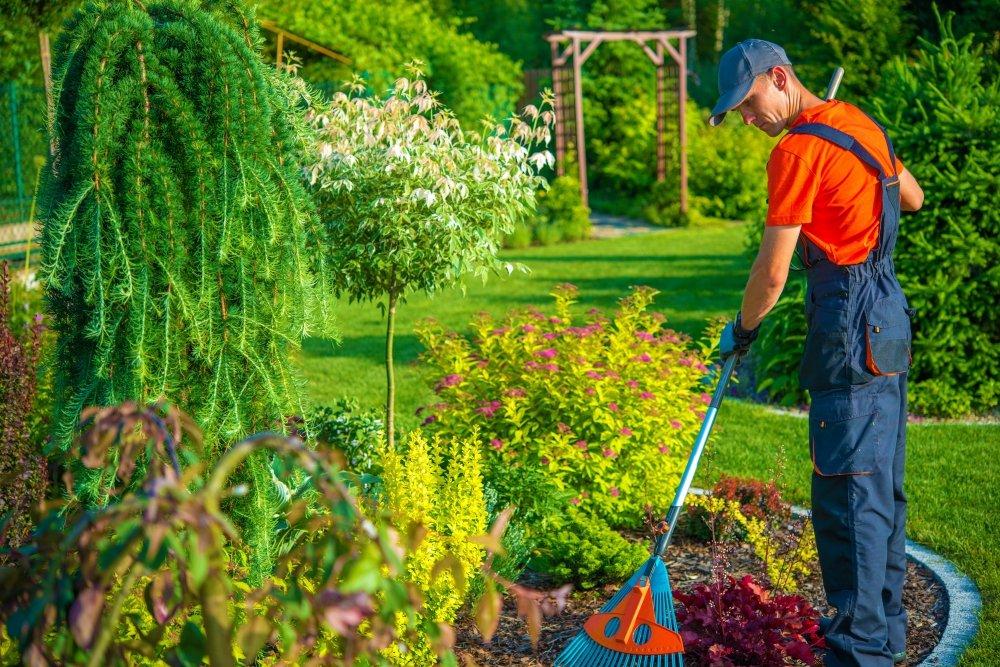 Como realizar a manutenção adequada do seu jardim