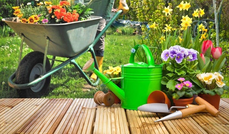 Por que você deve utilizar equipamentos de jardinagem apropriados para cuidar com o seu jardim?
