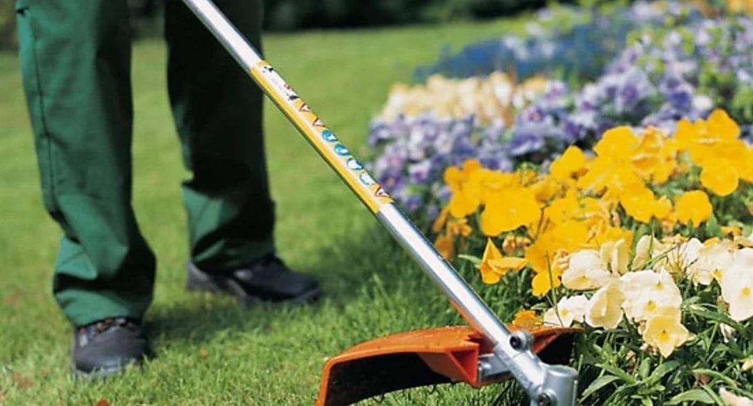 3 dicas essenciais para manter seu jardim bonito e organizado