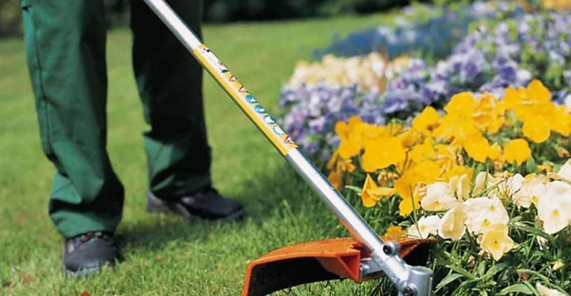 Para manter um jardim bonito e organizado são necessários alguns cuidados.